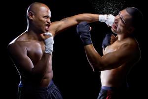 Nutrition wins by a knockout!