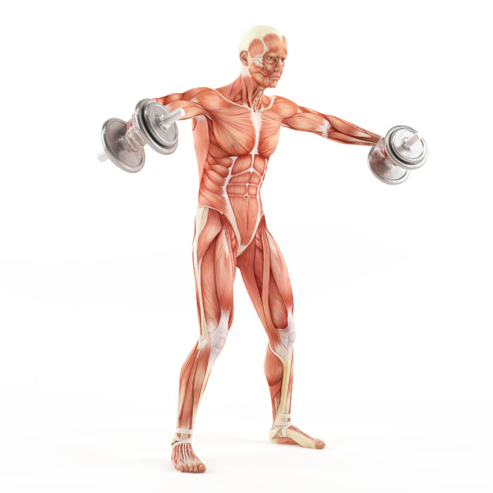 Shoulder Workouts For Mass 3 Crucial Shoulder Exercises To Include