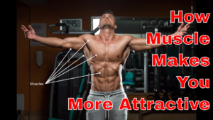 "How to be a Better-Looking Guy Part 4 of 4: ""How Building Muscle Makes You More Attractive"""