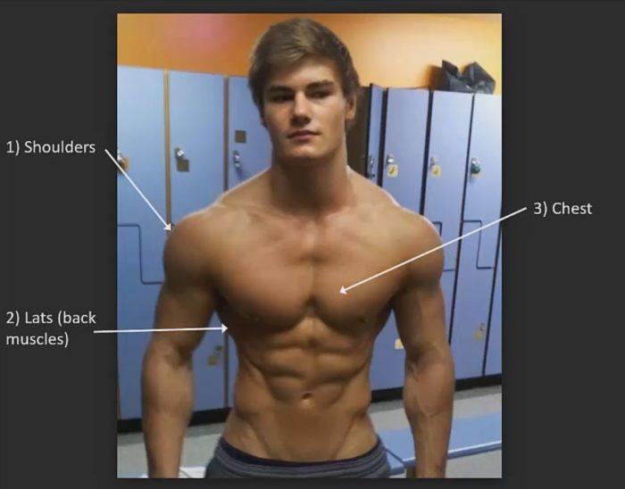 v shaped torso
